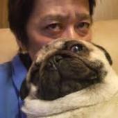 坂上犬.jpg